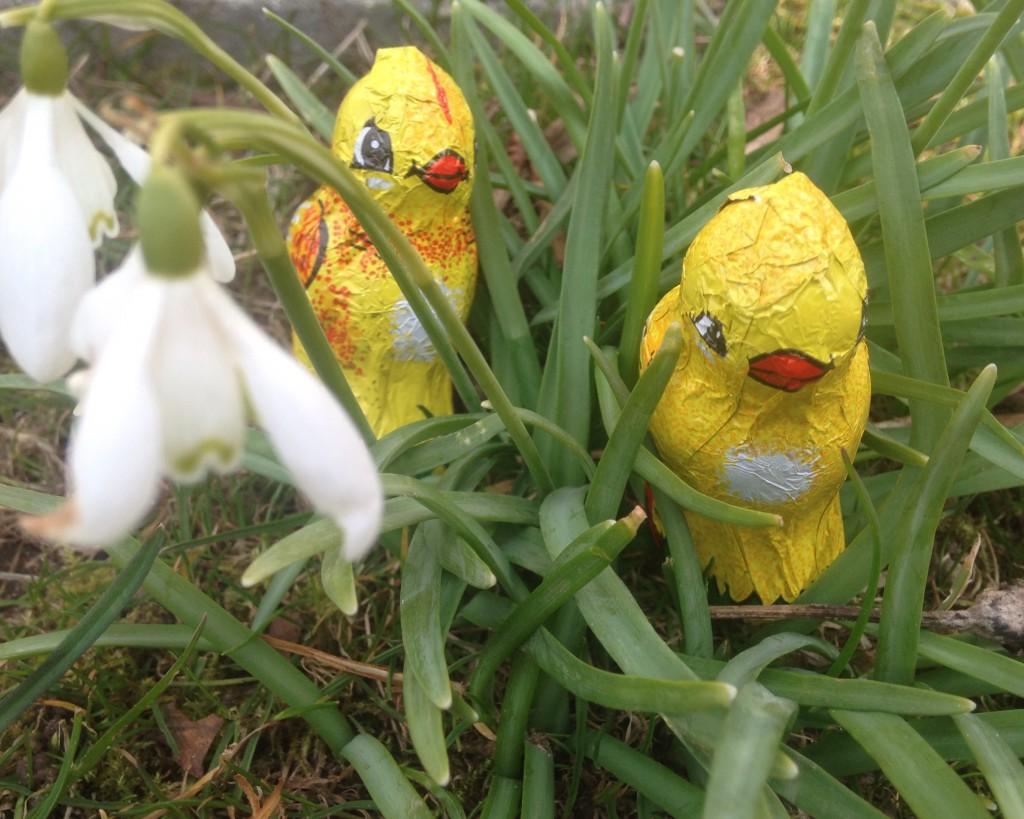Har påskeharen været på besøg?